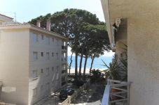 Balcon Vistas - Tucan