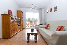 Alquiler apartamento en La Pineda con piscina. Gran Salón RISCOS