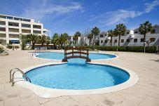 Vacaciones en La Costa Dorada, La Pineda (Tarragona). Piscina P.PRIMA4