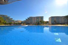 Apartamento en La Pineda - JUNCOS 2 Complejo con piscinas. Playa a 200m