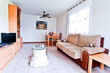 Apartamento en La Pineda - BAHIA