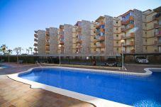 Alquiler piso en La Pineda cerca de la playa. Gran Piscina MARCO