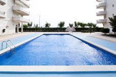 Alquiler piso para vacaciones en La Pineda. Piscina Comunitaria MARPINEDA